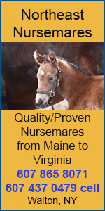 Northeast Nursemares
