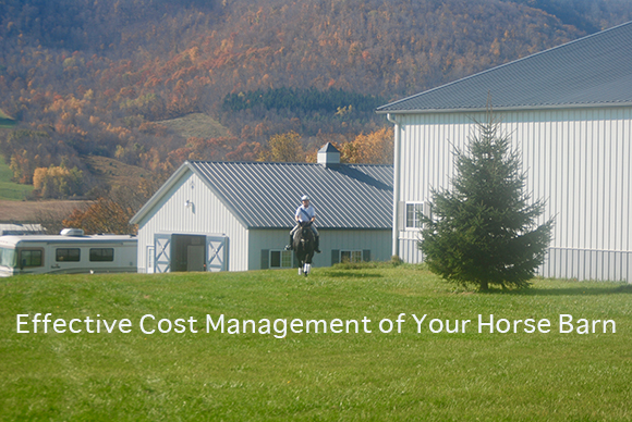 Effective Cost Management of Your Horse Barn