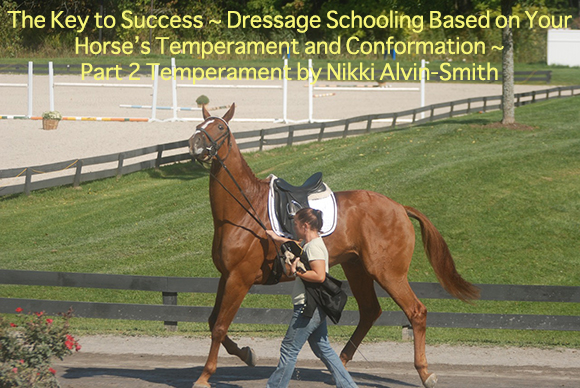 The Key to Success ~Dressage Schooling Based on Your Horse's Temperament and Conformation ~ Part 2 Temperament by Nikki Alvin-Smith